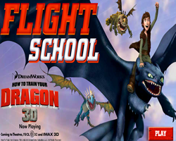 How to Train your Dragon Flight School